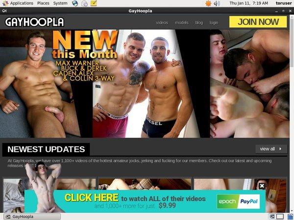 Gay Hoopla Contraseña Gratis